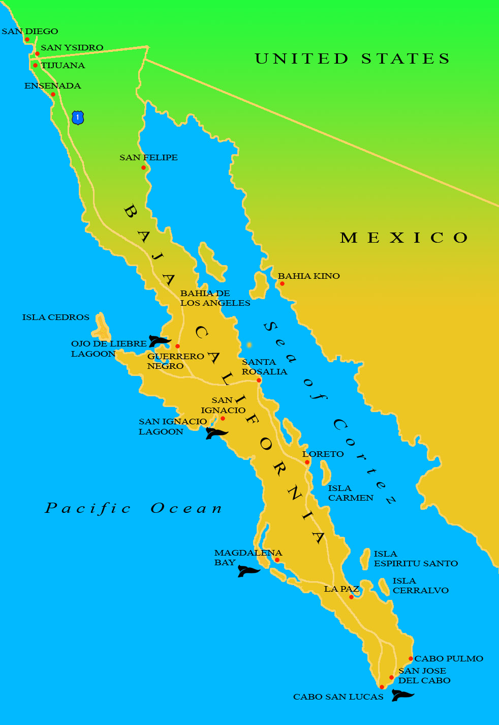 Bahia De Los Angeles Map.Baja Ecotours Baja Peninsula Map